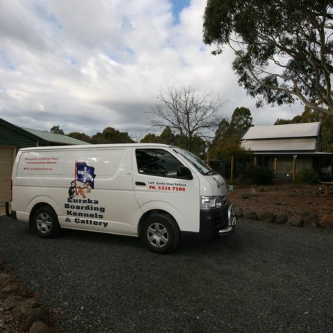 Pet transport Ballarat